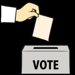 選挙で投票する手